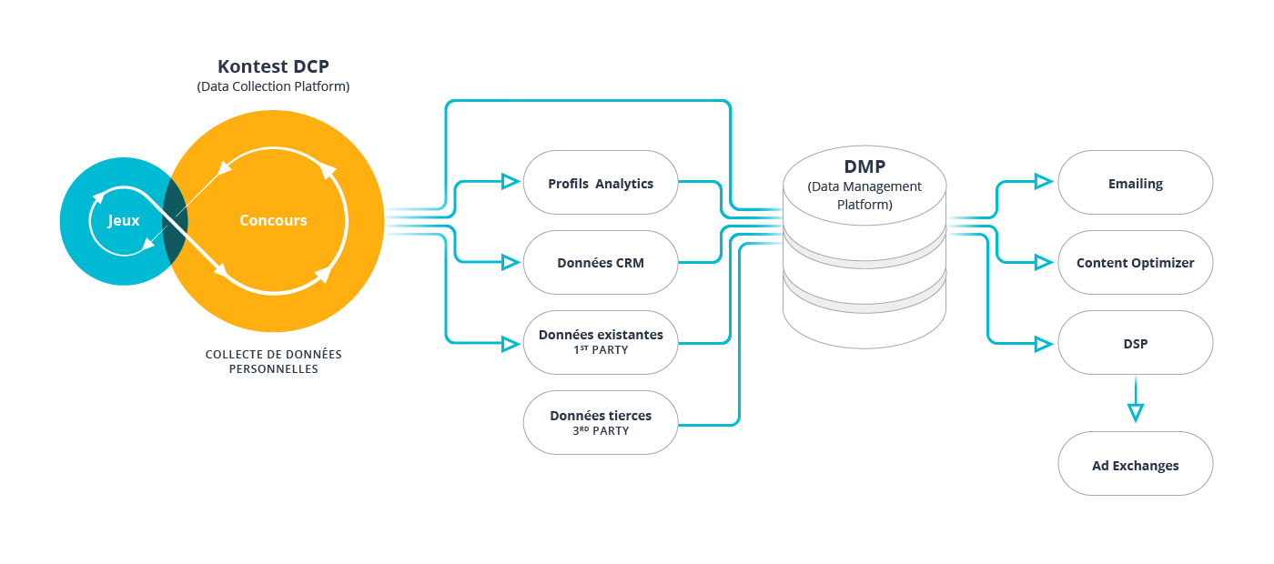schema-DMP